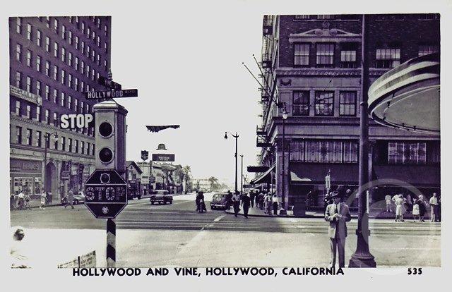 HollywoodVine4.jpg